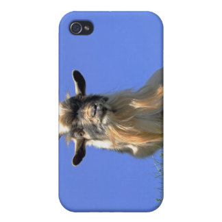 Billy Goat Photo Covers For iPhone 4