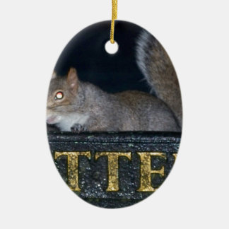 Bin-raid! Cheeky squirrel Ceramic Oval Decoration