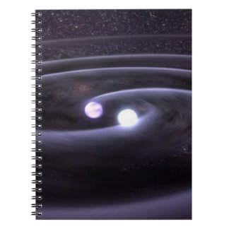 Binary White Dwarf Note Book