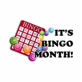 Bingo Month Standing Photo Sculpture