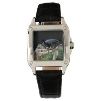 Binturong Popout Art, Ladies Square Leather Watch