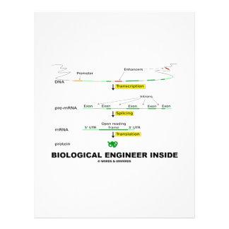 Biological Engineer Inside 21.5 Cm X 28 Cm Flyer
