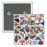 Biology, Biology The Study of Life. Pinback Button