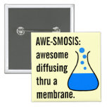 Biology & Chemistry: Teaching Science is Awesome Button