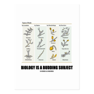 Biology Is A Budding Subject (Types Of Buds) Postcard