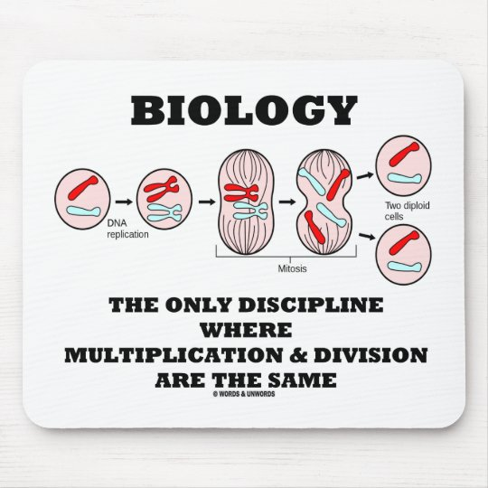 Biology Only Discipline Multiplication Division Mouse Mat