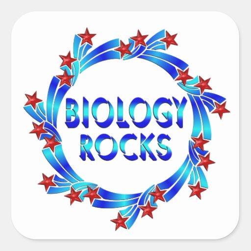 Biology Rocks Fun Square Stickers