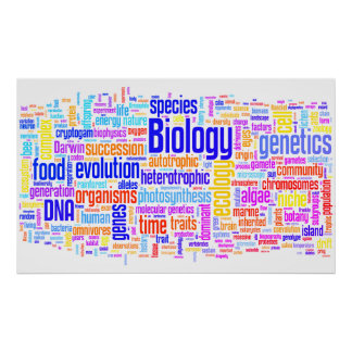 Biology Wordle No. 17 Poster