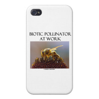 Biotic Pollinator At Work (Bee On A Flower) iPhone 4/4S Cover