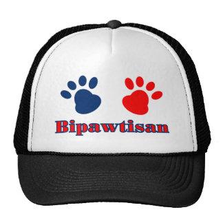 Bipawtisan Politics Mesh Hats