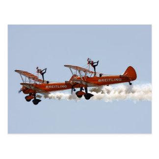 Biplane aerobatic Wing Walkers Postcard