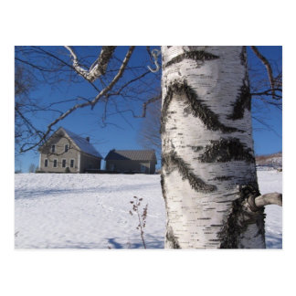 birch and home postcard