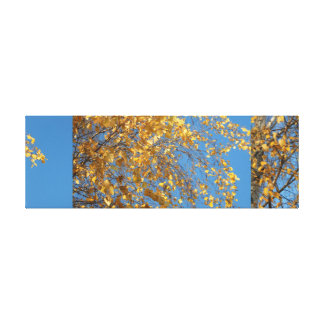 Birch. Approximation Stretched Canvas Print