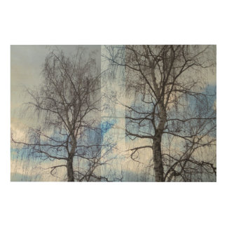 Birch. Approximation Wood Print