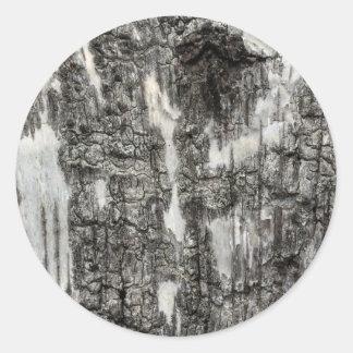 Birch bark classic round sticker