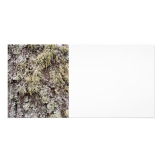 Birch bark personalised photo card