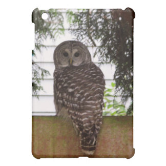 Birch Bay Owl Case For The iPad Mini