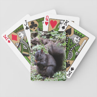 BIRCH BAY SQUIRREL BICYCLE PLAYING CARDS