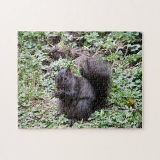 Birch Bay Squirrel Jigsaw Puzzle