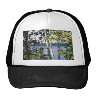 birch cap