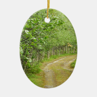 Birch Ceramic Oval Decoration