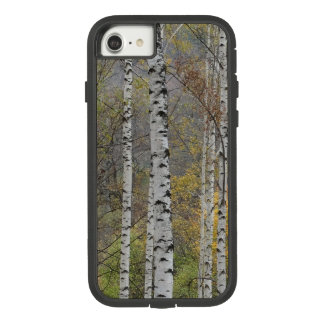 Birch forest Photo  Apple iPhone 8/7, Tough Xtreme Case-Mate Tough Extreme iPhone 8/7 Case