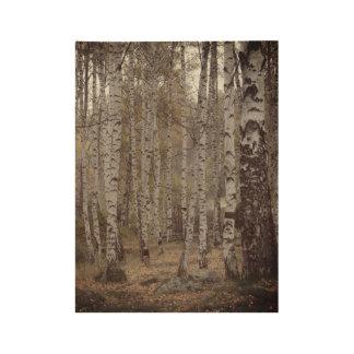 Birch forest Photo Custom Wood Poster