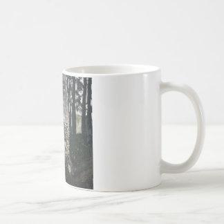 Birch in a Forest Mug