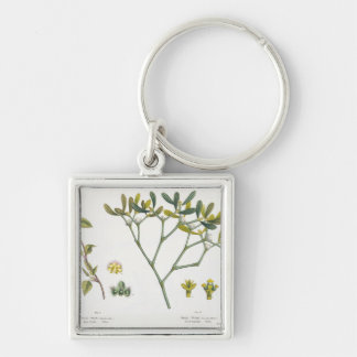 Birch (left) and Mistletoe (right), fig. 9 and 10 Silver-Colored Square Key Ring