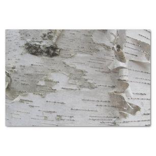 Birch Tree Bark Peeled Old Photo Art Tissue Paper