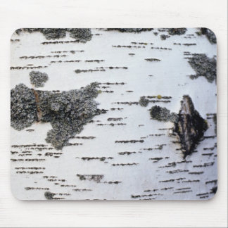 Birch tree in forest, detail, with moss mouse pad