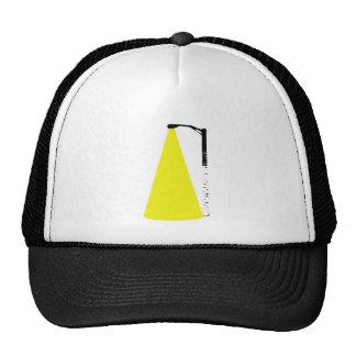 birch tree street lamp hat