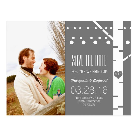 birch tree string lights photo save the date