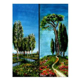 BIRCH TREES,CYPRESS, MEDITERRANIAN PINE IN TUSCANY POSTCARDS
