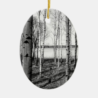 Birch trees forest by a lake in Finland Ceramic Oval Decoration