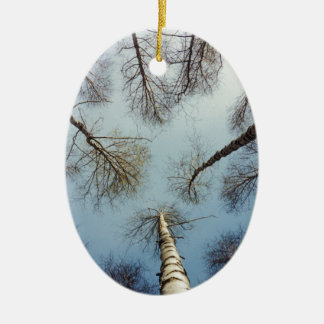 Birch trees forest in Finland Ceramic Oval Decoration