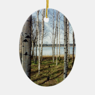 Birch trees forest in Finland Christmas Ornament