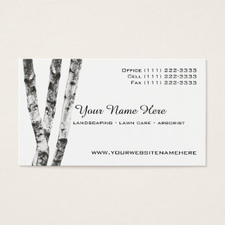 Birch Trees Landscape Arborist