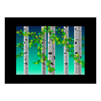 Birch trees, poster