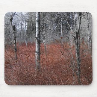 Birch Wetland Mouse Pad