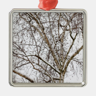 birch with snow christmas ornament