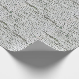 Birch Wood Texture Wrapping Paper