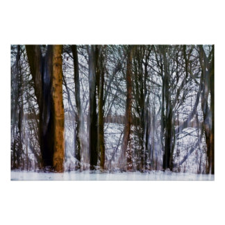 birch woods poster