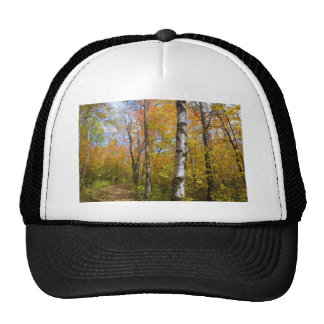 birchpath hats