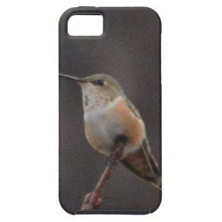 Bird American Rufous Hummingbird Nature Case For The iPhone 5
