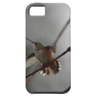 Bird American Rufous Hummingbird Nature Tough iPhone 5 Case
