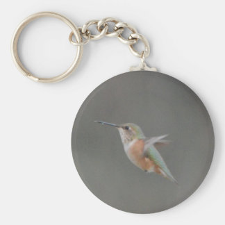 Bird American Rufous Hummingbird Nature Keychains
