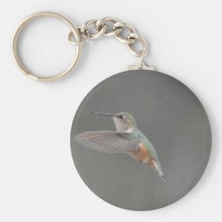 Bird American Rufous Hummingbird Nature Key Chains