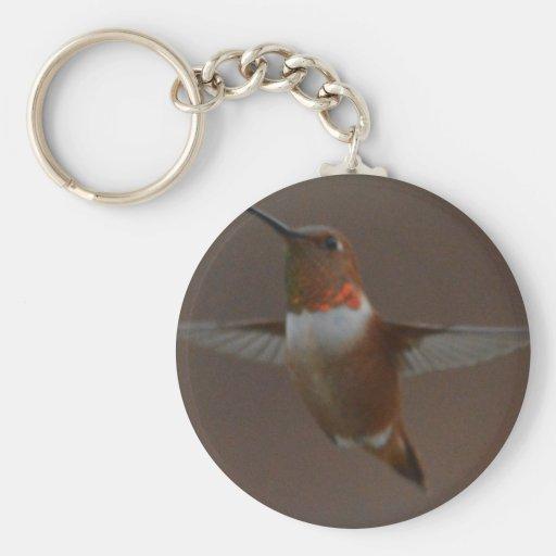 Bird American Rufous Hummingbird Nature Keychain
