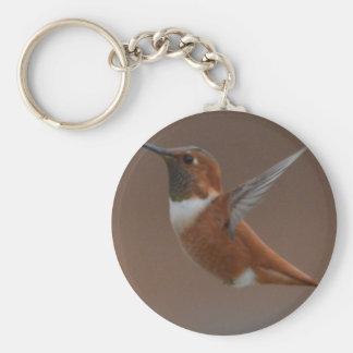 Bird American Rufus Hummingbird Nature Keychains